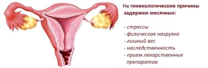 Не гинекологические причины задержки месячных