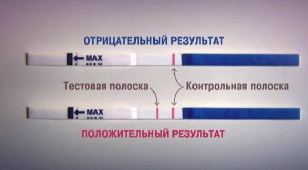 Тест не беременность