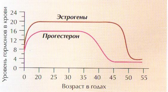 Эстрогены при климаксе