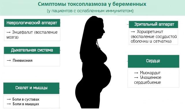 Симптомы токсоплазмоза у беременных