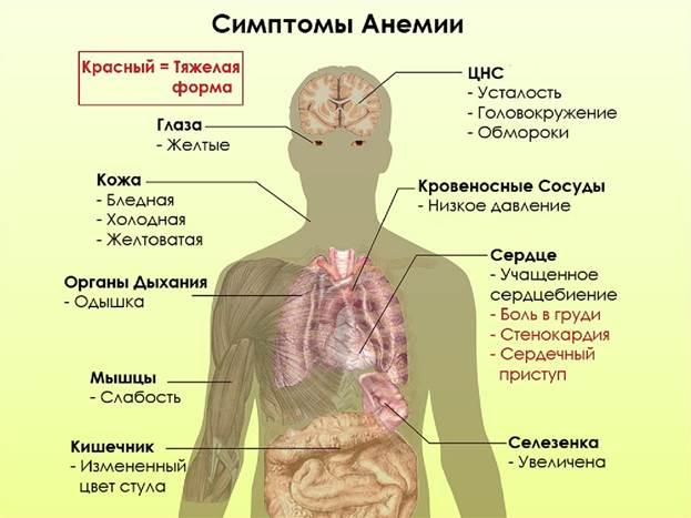 Симптоматика анемии