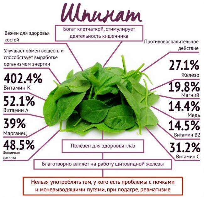 Чем полезен шпинат при ГВ