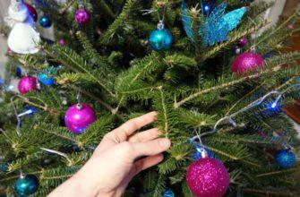 Когда убирать елку после нового года